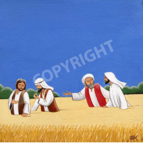 The disciples in the grain field