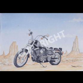 Harley In The Desert
